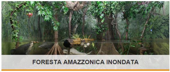 Esplora_Foresta