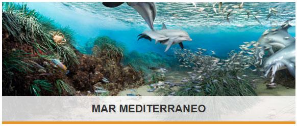 Esplora_Mediterraneo