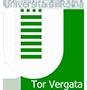 LogoTorVergata90